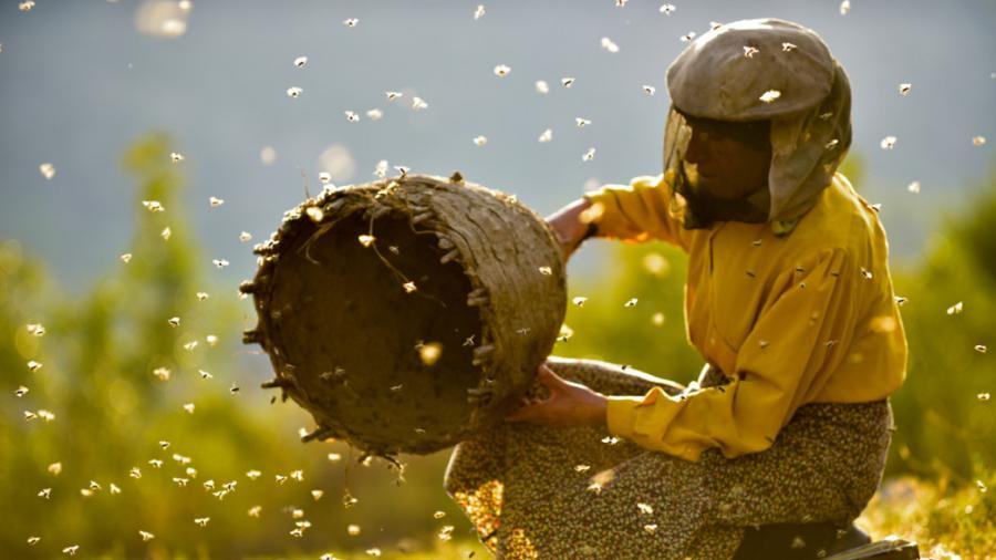 Biavler der arbejder